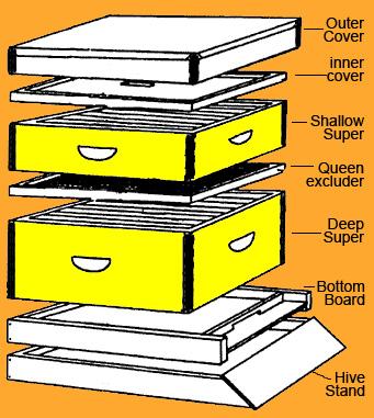 Modern Beehive